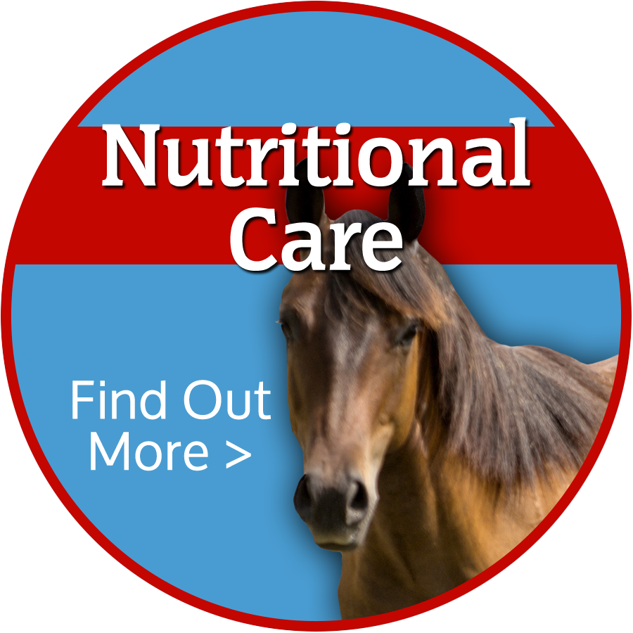 Animal Nutrition Colorado Springs